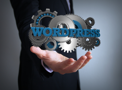 Wordpress vs. Custom Developed Content Managers - Calgary Web Development - eKzact Solutions Inc.